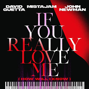 David Guetta & Mistajam & John Newman If You Really Love Me (How Will I Know)